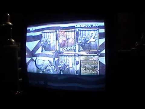 big buck hunter pro tv game instructions
