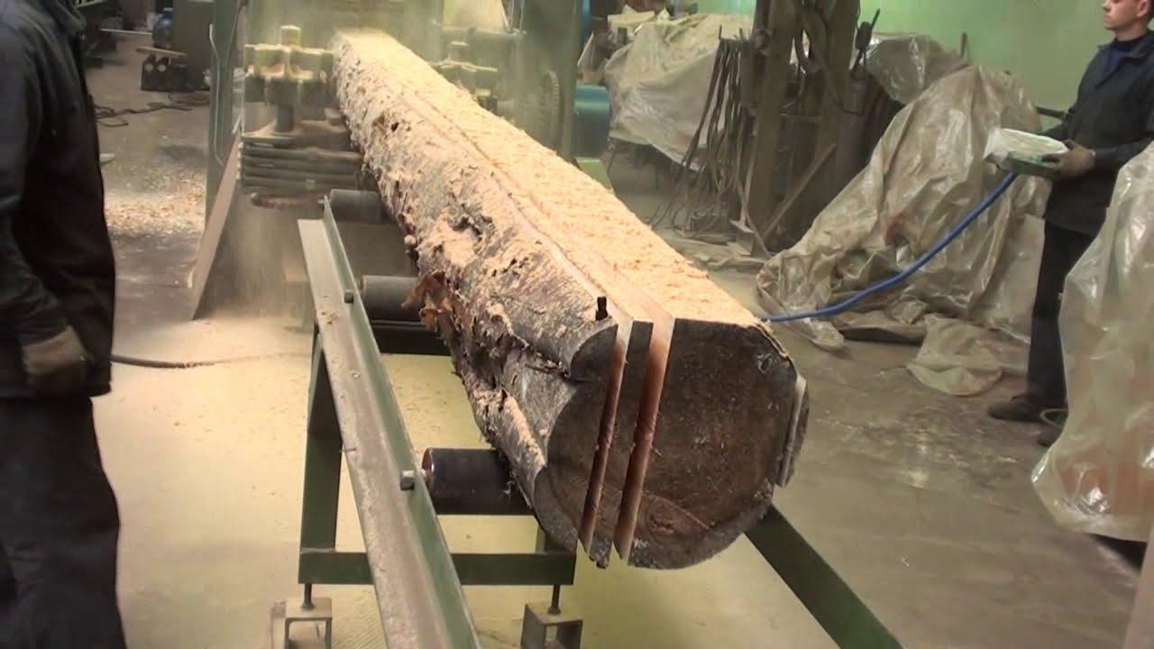 2 In 1 Log Gang Saw Rip Sawing Multiple Board Edging