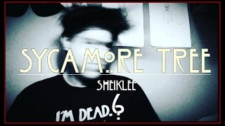 Sycamore Tree Spanish Cover: SheikLee|American Horror Story: Roanoke