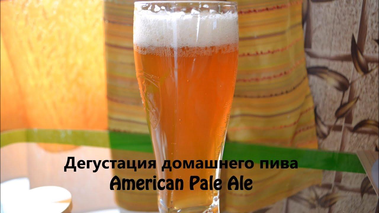 Домашнее пиво своими руками рецепт