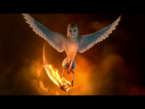 Legend of the Guardians: The Owls of Ga'Hoole Beautiful Scene [slow motion]