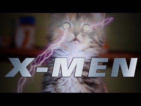 X-MENなうちの可愛い...
