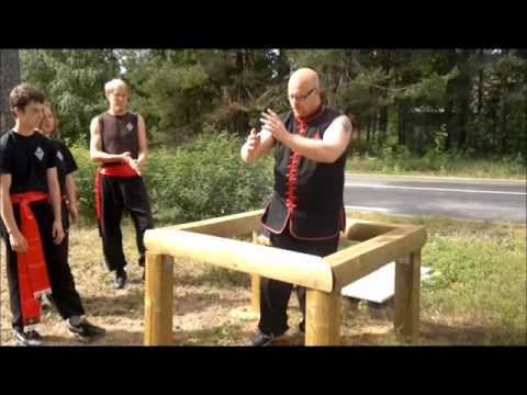 hung gar kung fu training camp 2011