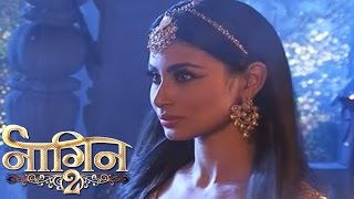 NAAGIN 2 - 31st December 2016 | Shivangi Saw in Shivanya Eye | Colors Tv NAAGIN Season 2 News