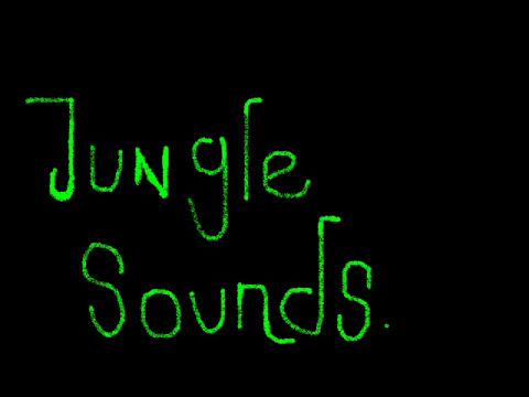 NUEVO TEMAZO Septiembre 2010:Jungle Sounds -  DJ Joan Saavedra