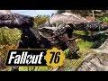 Ленивец, Зверожог и куча багов // Fallout 76