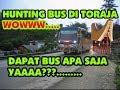 Hunting Bus Apa Adanya Pertama Kali Di Toraja