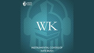 White Knight Instrumental Night Of The Swallow