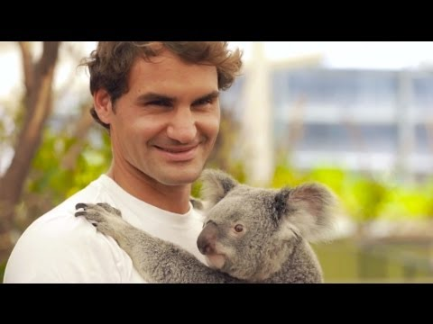 Roger Federer meets the koalas - Brisbane International 2014