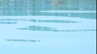 Swimming   11088