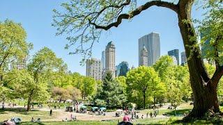 NEW YORK CITY 2018: SPRING in CENTRAL PARK [4K]
