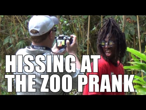 HISSING AT THE ZOO PRANK