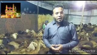 Eid ul azha ka qususi program plz watch me