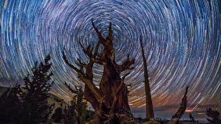 Amazing timelapses show night sky