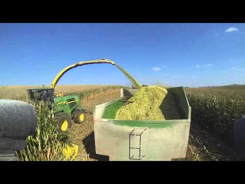 Silage In Usa