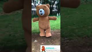 adults inflatable Teddy Bear Mascot costume walking in the park funny mascot costumes
