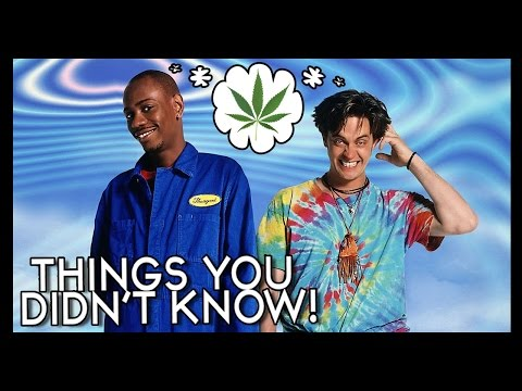 9 Things You (Probably) Didn't Know About Half Baked!