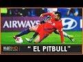 Gary Medel  The Pitbull  Todos Los Tiempos
