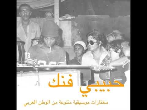 Habibi Funk // حبيبي فنك : Hamid El Shaeri - Ayonha (Egypt / Libya 1980s, pre-order below)
