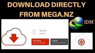 How To Download Files Directly From MEGA.NZ 3.93 MB