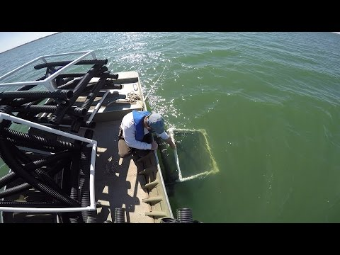 Installing Fish Habitat Cubes in Kansas