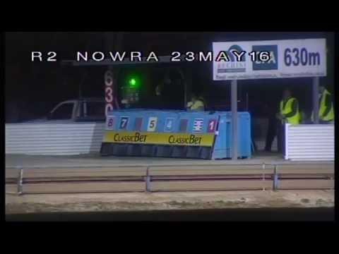 NOWRA-23052016-RACE-2