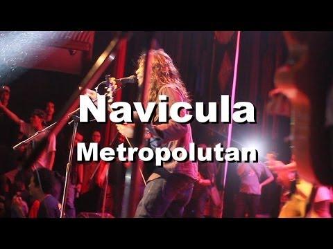 Navicula - Metropolutan