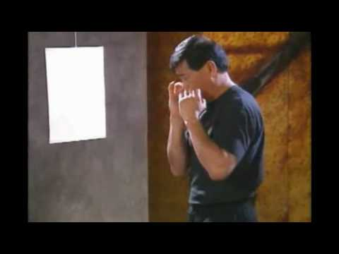 Bruce Lee's jeet kune do techniques video Image 1