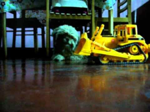Bruder CAT Bulldozer RC Conversion