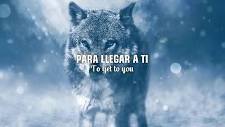 Download Lagu SELENA GOMEZ & MARSHMELLO - WOLVES |LETRA EN INGLÉS Y ESPAÑOL Gratis STAFABAND