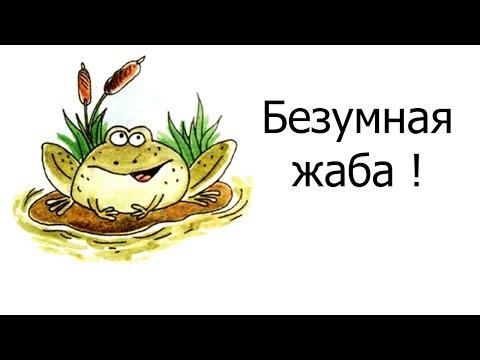 Безумная жаба !