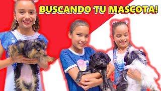 BUSCANDO LA MEJOR MASCOTA   TV ANA EMILIA