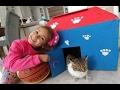 Kedicik Alinanın evini getirdik.Eski evden oyuncakları getirmeye devam ediyoruz.