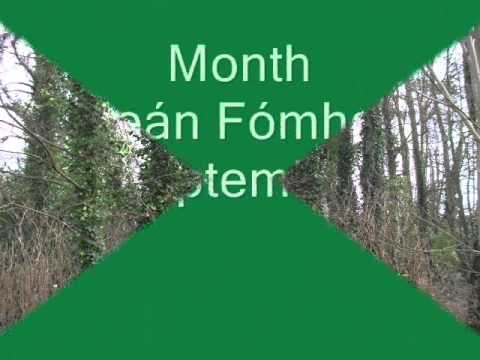 Irish Ogham Calendar