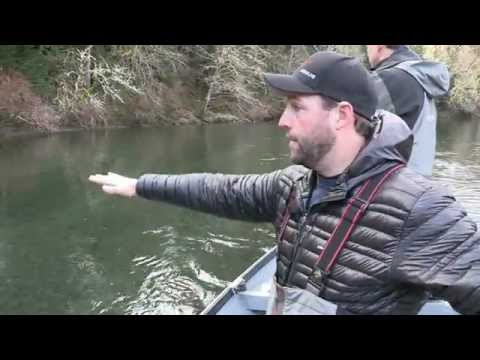 Olympic Peninsula Steelhead
