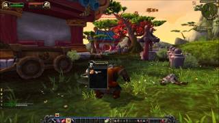 Let's play World of Warcraft Schweizerdeutsch Part 4 allein allein