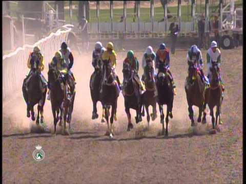 Carreras de Caballos 2014 - Hipódromo de Pineda