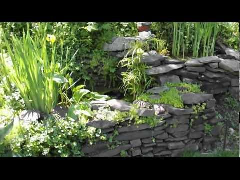 Diy homemade fish pond water garden no kit for Do it yourself fish pond
