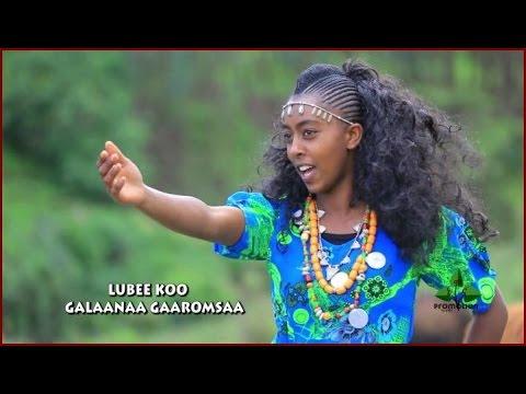 """Hot, New Oromo/Oromia Music """"Lubee Koo"""" Galaanaa Gaarumsaa"""