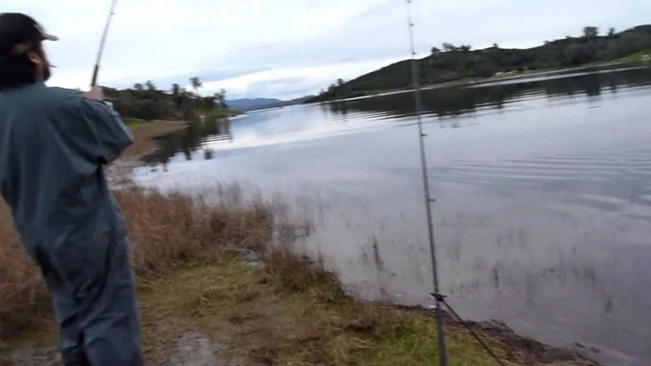 Fishing lake pardee for rainbow trout in california on feb for Freshwater fishing in southern california