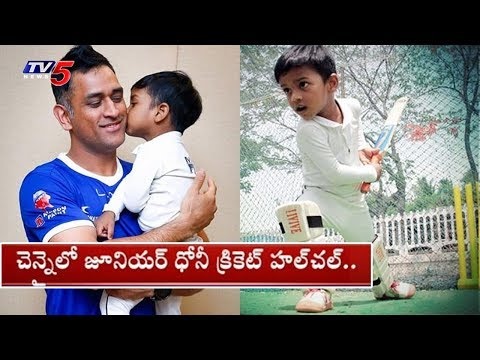 #JuniorMSD | 3 Years Old Junior Dhoni Cricket Hulchul in Chennai | TV5 News
