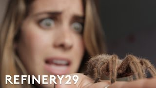 5 Days Of Facing My Worst Fears . . . Bug Eating Challenge   Try Living With Lucie   Refinery29