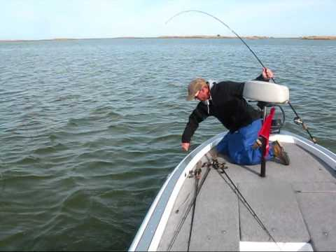 Lake Clair Fishing Report on Smallmouth Bass Fishing On Lake St Clair Some More Footage