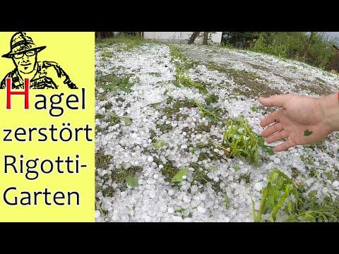 Hagel Und Unwetter: Totalschaden Im Rigotti Garten - Alles Kaputt