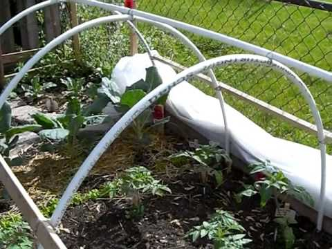 How To Make A Hoop House Or Green House For Cheap Youtube