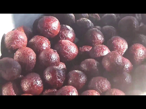 recipe of gulab jamoon by JJ Jalebi/kurla/ mumbai street food