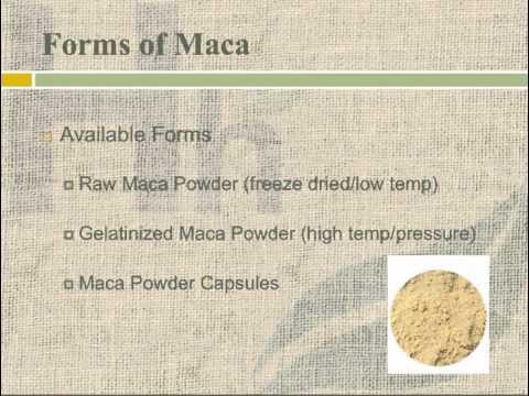 Maca Benefits - Maca Root Benefits