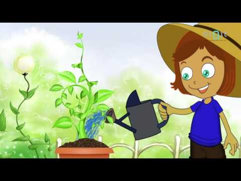 Let's Water The Plants Today Song | Animated Nursery Rhymes & Songs For  Kids
