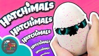 Hướng dẫn chi tiết cách ấp trứng HATCHIMALS, chủng loại lấp lánh Birtles