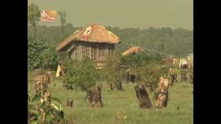 Nijhumdip-1 report by humayun, বনদ্যুসদের কালো থাবা ঐতিহ্য হারাচ্ছে হাতিয়ার নিঝুমদ্বীপ।